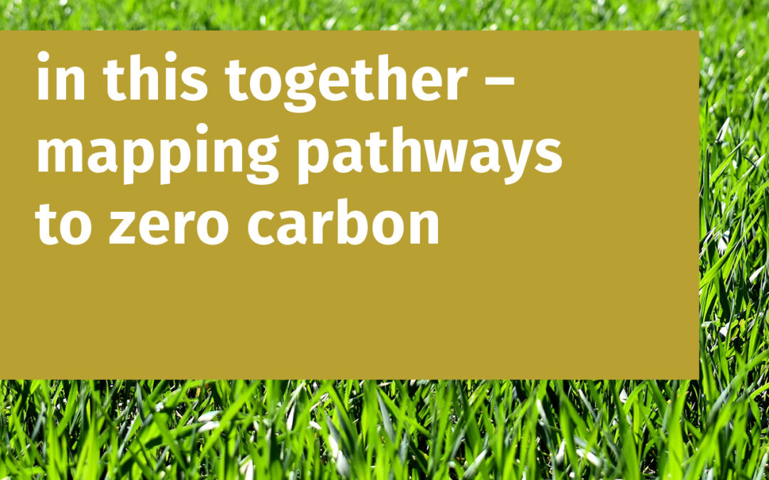 In this together – mapping pathways to zero carbon