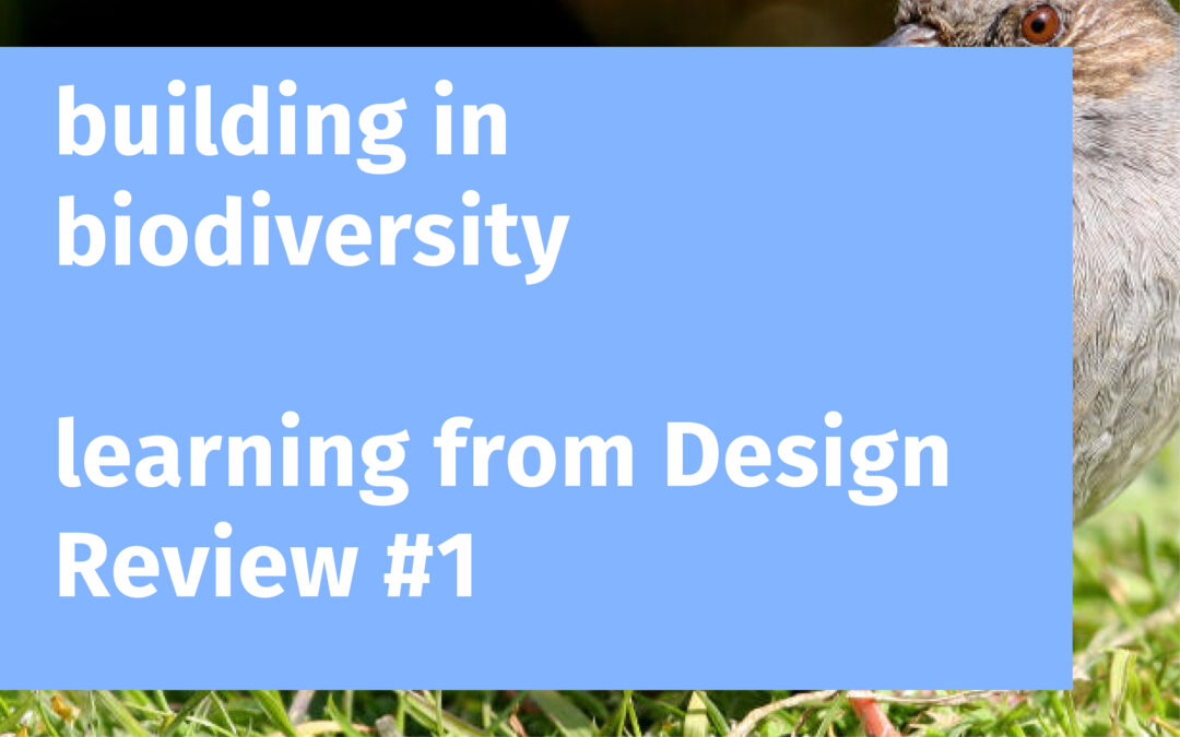 Building in Biodiversity: Learning from Design Review #1